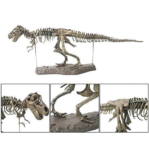 Dinosaurier-Ausgrabungs-Kits für Kinder, 4D zusammengebaute Dinosaurier-Knochen-Kits pädagogische Dino-Skelettmontagesatz, kreatives Fossil Dig Dino-Spielzeug für Kinder