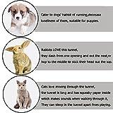 Newcomdigi Katzentunnel 3- Wege Rascheltunnel Katzenspielzeug tunnel faltbar für Kaninchen Katze Kätzchen Welpen Spielzeug Höhle -