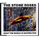 What the World is Waiting For / Fools Gold
