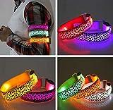 FGVBHTR LED-Hundehalsband, Leopardenmuster, fluoreszierend, Blinkende Lichter, reflektierendes Nylon-Gürtel, beleuchtetes Armband, für Haustiere, Mehrfarbig