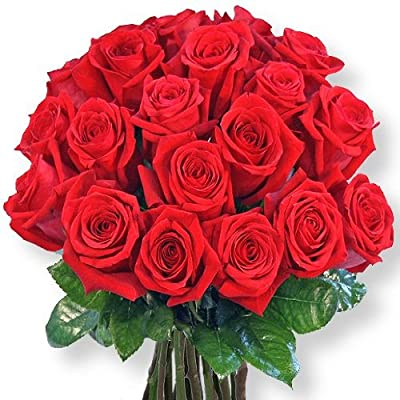 20 rote Rosen und Pralinen-Herzen von Valentins auf Du und dein Garten