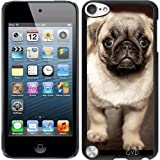Best Nature Made Mops - Case for Ipod Touch 5 - Cute mops Review