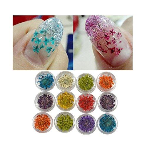 YUYOUG 12 Couleurs 3D Décoration Réel Séché Sec Fleur pour UV Gel Acrylique Nail Art Conseils