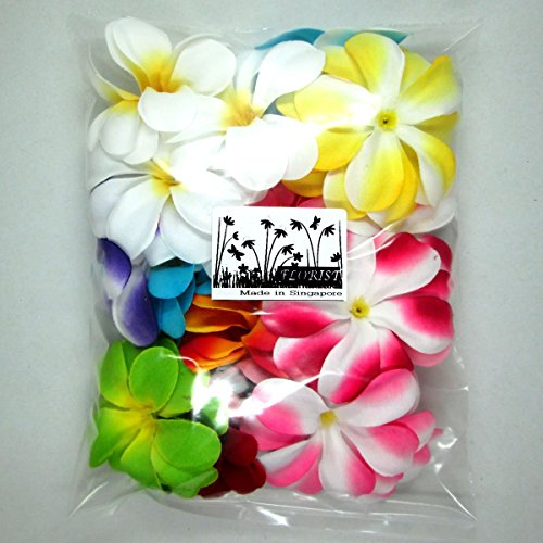 24-Hawaiian-Plumeria-Frangipani-flor-de-seda-cabezas--3-cm--flores-artificiales-Head-tela-Floral-Supplies-Wholesale-Lot-para-boda-flores-accesorios-vestido-de-novia-Make-Clips-de-pelo-diademas