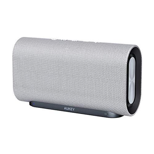 AUKEY Enceinte Bluetooth 20W, 12 Heures d'Autonomie, Basses améliorées avec Double radiateur Passif/Subwoofers - Compatible Echo, iPhone, iPad, Samsung, Android (Gris)
