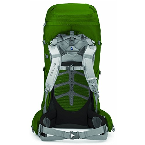 Osprey Aether 60 Sac à dos Taille M 63 l - bonsai green