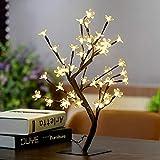 Cracklight Künstliche Weihnachtsbaum Lichter - Weihnachtsbeleuchtung Batteriebetriebene kleine Kirschbaum mit Tischleuchte 17,7 Zoll Warmweiß/Weiß / Bunte Baum Lichter für Tischdekoration