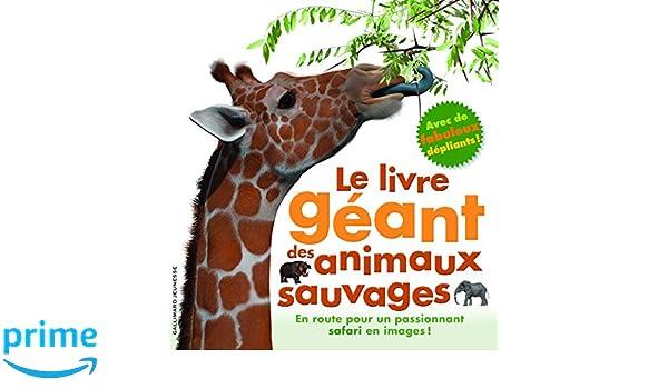 Le Livre Geant Des Animaux Sauvages Amazon Co Uk Marie