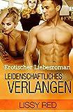 Erotischer Liebesroman: Leidenschaftliches Verlangen