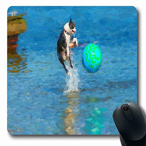 Luancrop Mauspads für Computer Athletischer Boston Terrier, der nach Wasserball-Tierparks springt Beachball-Hunde- Dock-Hundespaß-Entwurfs-rutschfeste längliche Spiel-Mausunterlage
