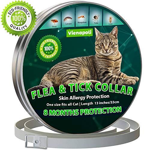 Collar antipulgas y garrapatas para Gatos