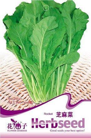 Lot de 3 300 de Rocket Graines de légumes, Vert Roquette Rughetta Seed D021