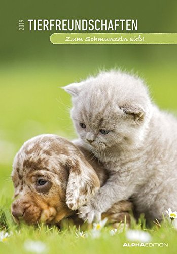 Tierfreundschaften 2019 - Animal Friends - Bildkalender (24 x 34) - Tierkalender