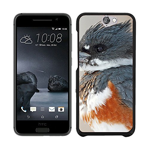 print-motif-coque-de-protection-case-cover-f00017222-pjaro-del-martn-pescador-htc-one-a9-not-fit-m9
