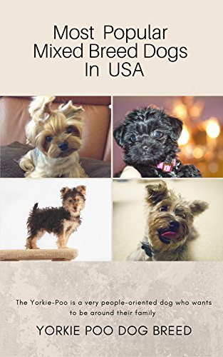 most-popular-mixed-breed-dogs-in-usa-yorkie-poo-dog-breed-english-edition