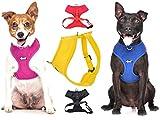 Dexil Elite Range Hundegeschirr, gepolstert, wasserfest, verstellbar, Ring hinten und vorne (zum Vermeiden von Ziehen)