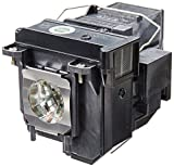 Epson V13H010L71 Replacement Lamp/Bulb