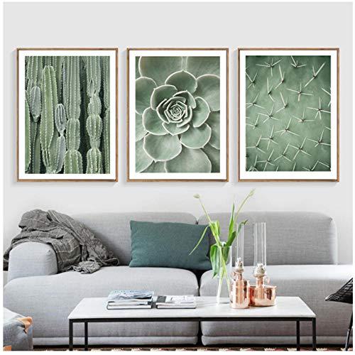 Juabc 3 Stücke Grüne PflanzeWandkunst Leinwand Malerei Kaktus Poster Und Drucke Wandbilder Für Wohnzimmer 50X70 cm X 3 Kein Rahmen -