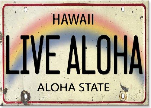 Kühlschrank Magnet mit Hawaiianischem Motiv - Live Aloha License Plate