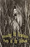 Brooding the Heartlands Poets of the Midwest