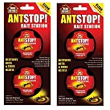 Outdoor Ant Killers Review and Comparison