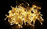 eyeCam EC725 Lichternetz 3 x 3 Meter- Lichterkette mit 300 LEDs Weihnachtsbeleuchtung Weihnachtsdeko Partybeleuchtung Stimmungslichter innen [Warmweiß]