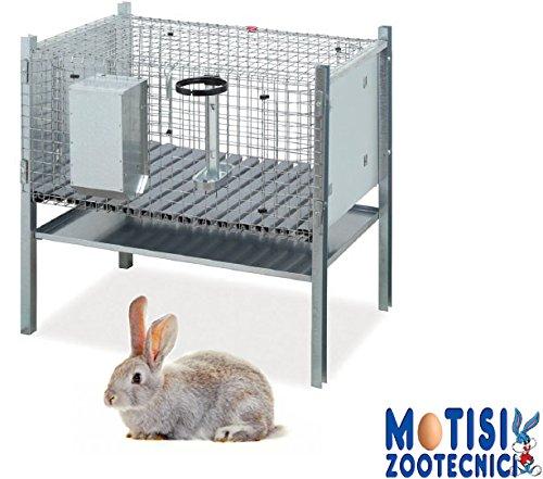 Gabbia per coniglio maschio con angoli arrotondati, completa di mangiatoia, abbeveratoio, padella raccolta feci e posatoio. - misure cm.70x50x70 h c