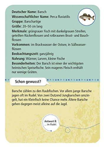moses-Expedition-Natur-50-heimische-Strandtiere-und-Pflanzen-Bestimmungskarten-im-Set-Mit-spannenden-Quizfragen