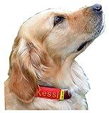 josi.li Halsbandtasche rot für Hundemarke