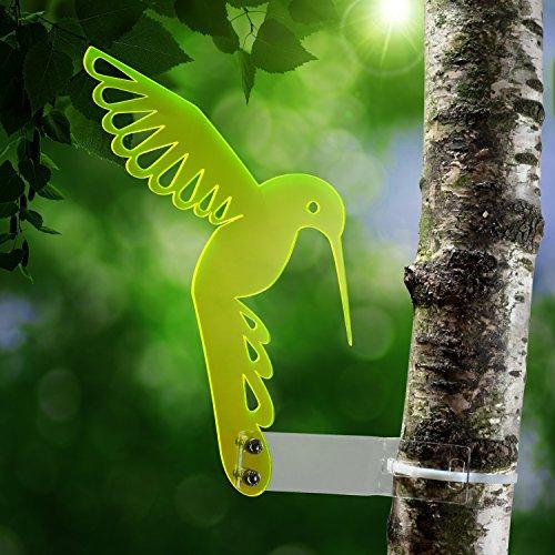 sol-atrapasuenos-colibri-de-plexiglas-transparente-xxxx-fluorescente-vivos-bordes-tambien-en-noche-d