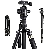 HUTACT Tripod Camera for dslr, Monopod Kit & Ball Head with Quick Release Plate, Small Flexible Compact for Canon, Sony, Nikon, Samsung, Panasonic, Olympus, Kodak, Fuji and Video Digital Camera