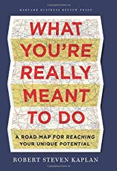 What You're Really Meant to Do: A Roadmap for Reaching Your Unique Potential