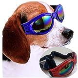 Perro gafas de sol Deporte al aire libre para un paseo mascotas decoración gafas Gafas de fiesta