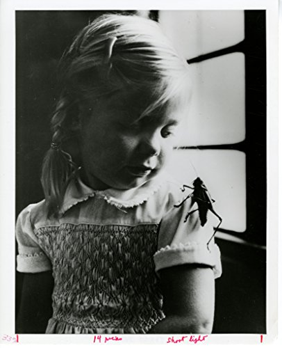 poster-child-at-insect-zoo-er-david-lee-c-1977-ic-print-standard-number-94-2867-a-child-visiting-ork