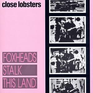 Foxhead Stalk This Land