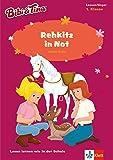 Bibi & Tina - Rehkitz in Not: Lesen lernen - 1. Klasse ab 6 Jahren (A5...