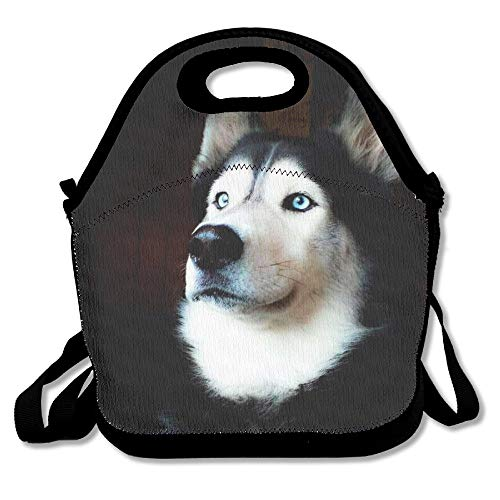 Qian Mu888 Cute Husky Printed Portable Lunch Bag Carry Case Tote with Zipper Strap Box Cooler Container Bags Picnic Outdoor Travel Fashionable Handbag Pouch for Women Men Kids Girls