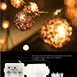 EchoSari 20er LED Rattan-Ball Lichterketten Deko Warmweiß Batteriebetrieben [Rattan Ball's Diameter:5cm/2.04 in ] Ideal für Weihnachtsbaum Party Hochzeit Garten Dekoration -- Braun/klares Kabel