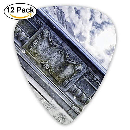 Gothic Frozen Coffin Guitar Pick 12pack