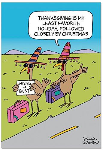 TRAMPEN Puten Happy Holiday Witz Papier Karte 12 Happy Holiday Card Pack (SKU:B2503HHG) 12 Happy Holiday Card Pack (SKU:B2503HHG)