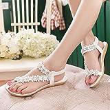 Women Sandals,Internet Women Fashion Sandals Summer Bohemia Flower Beads Flip-Flop Shoes Flat Sandals
