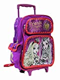 Full Size Pink Ever After High Friends F...