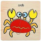 Squarex en bois Lovely puzzle Educational développement bébé enfants formation jouet Scrapbooking Cadeau AS Show J