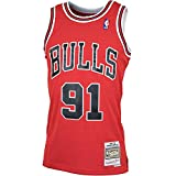Mitchell & Ness Chicago Bulls 91 Dennis Rodman Swingman Retro Trikot Jersey (L, red)