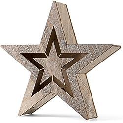 SnowEra LED Holzdekoration / Weihnachtsdekoration / Weihnachtsbeleuchtung mit 10 LED´s inkl. Batterien – Lichtfarbe: warm weiß | Form: Stern 1 - FSC 100 %