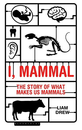 I, Mammal: The Story of What Makes Us Mammals (English Edition)
