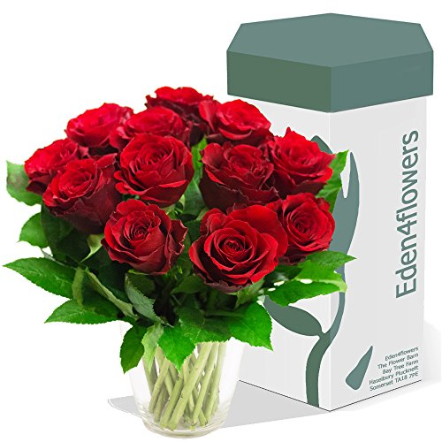 eden4flowers-bqf-12crrs-12-classic-roses-bouquet-red