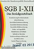 Das neue Sozialgesetzbuch - SGB I-XII (Rechtsbibliothek Gesetze 40)
