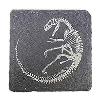 Azeeda Slate Dinosaur Fossil Coasters (Allosaurus)