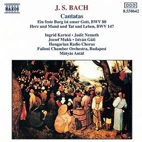 Cantata: Ein feste Burg ist unser Gott, BWV 80: Recitativo